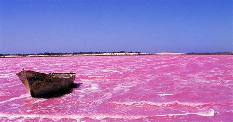 Traveling the Pink Lakes of Senegal | Good Sh*t | OZY