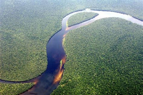 Congo Rainforest - Aerial view of the Congolese rainforest