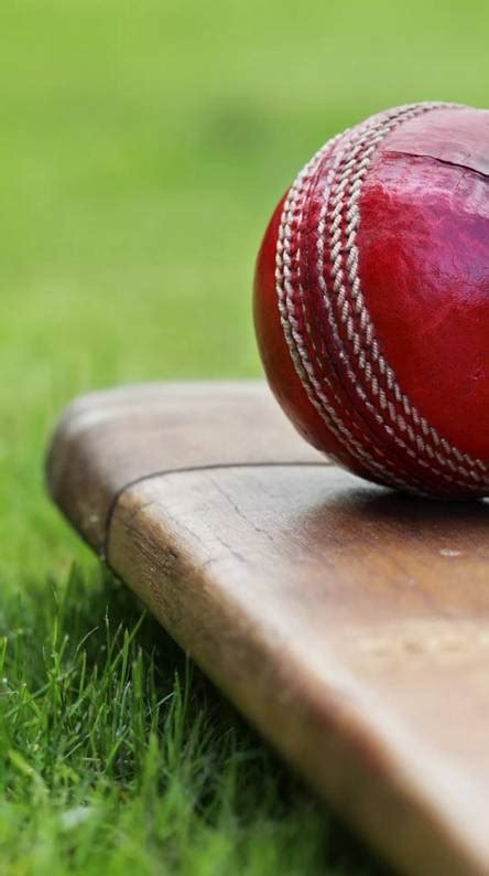 Cricket Wallpapers - Free by ZEDGE™